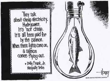 They talk about cheap electricity. Hydropower. It's not cheap. It's all been paid for by the salmon. When these lights come on, a salmon comes flying out. -- Billy Frank, Jr. (Nisqually tribe)